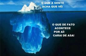 ATE ONDE VAI A TOCA DO COELHO (2)