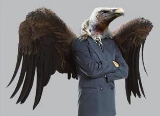 abutre-615x448